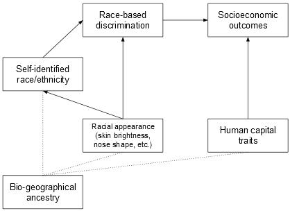 colorism path